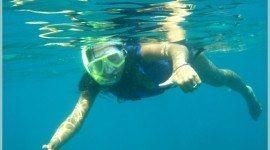 Actividades acuáticas: El snorkeling